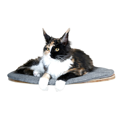 Katzen Wandliegebrett Tofana oval