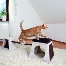 Katzen Agility Balancier-Set