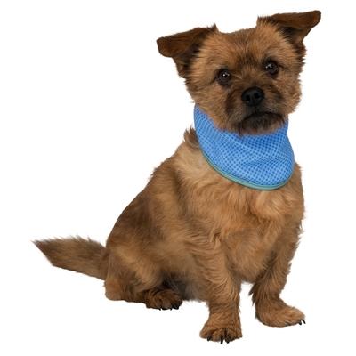 Kühlbandana Kühlhalsband für Hunde