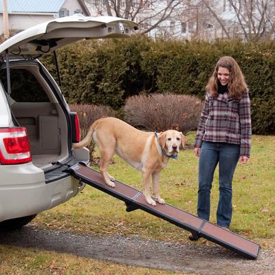 Pet Gear Travel Lite Hunderampe
