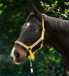 Pferde Halfter NeonReflex reflektierend