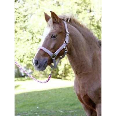 Pony Halfter-Set Lilli mit Führstrick