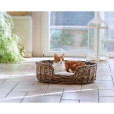 Schöne Hundebetten hundebetten und hundekörbe aus rattan kaufen
