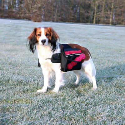Rucksack für Hunde, schwarz