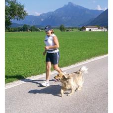 Spiralleine Hund Jogging
