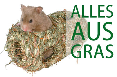 Alles aus Gras für Nager