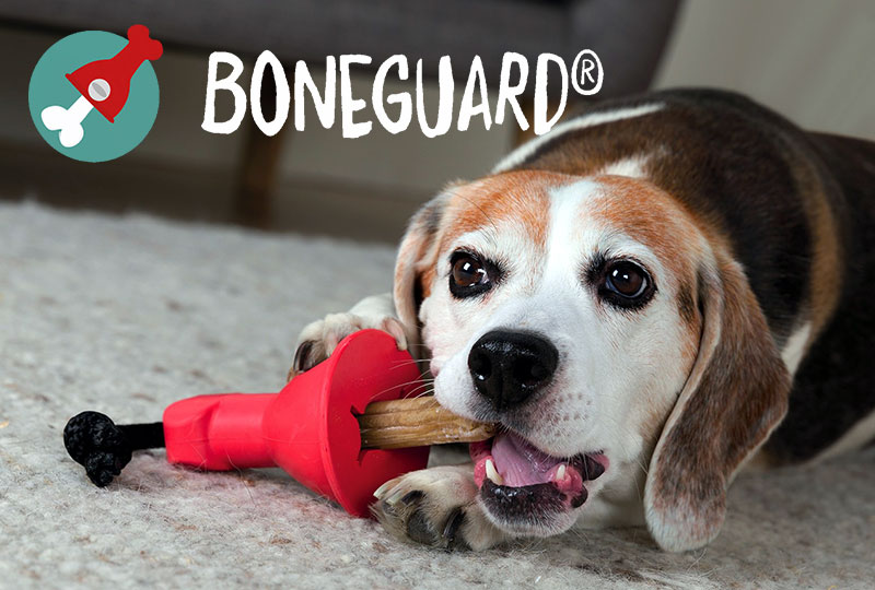 Boneguard Kauknochen Halter