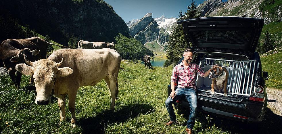4pets Hundeboxen Schweiz, Bild 7