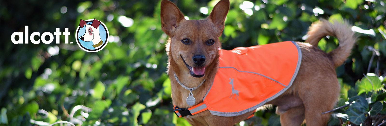 Alcott Hundezubehör Online Shop, Bild 1