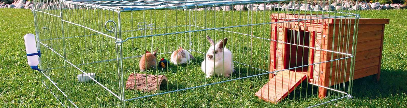 Freilaufgehege für Kaninchen und Meerschweinchen günstig bestellen