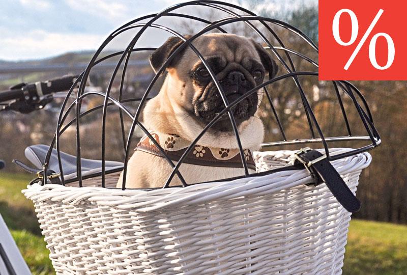 hundebedarf hundezubeh r online im hundeshop von. Black Bedroom Furniture Sets. Home Design Ideas