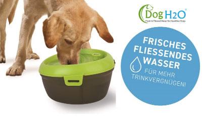 Dog H2O Hundetrinkbrunnen