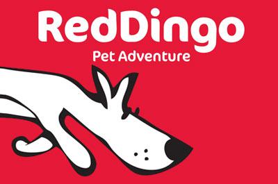 Red Dingo Hundeleinen