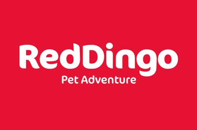 Red Dingo Halsbänder