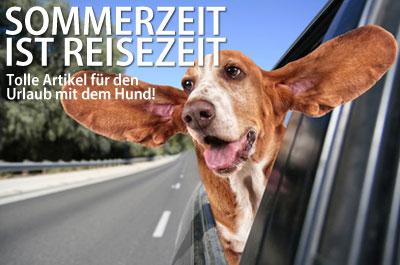 Urlaub mit dem Hund