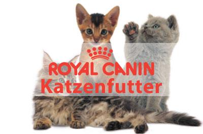 Royal Canin Katzenfutter Online Shop