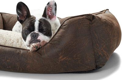 Hunde Schlafplätze Online Shop