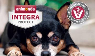 Animonda Integra Protect Diätfutter für Hunde