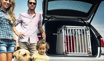 Autoboxen für Hunde