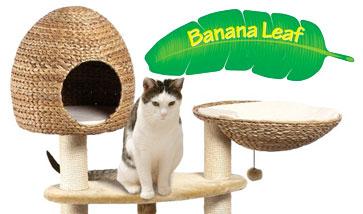 Banana Leaf Kratzbäume und Kratzmöbel