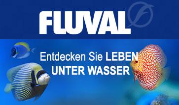 Fluval Aquarien