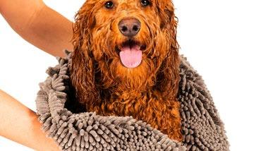 Hundehandtücher