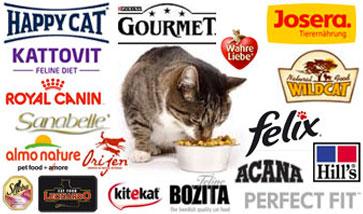 Katzenfutter günstig