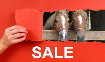 Pferdezubehör SALE Angebote