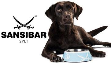 Hunter Sansibar Hund