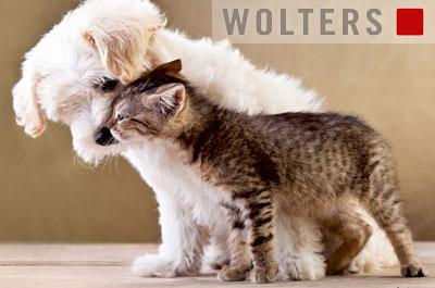 Wolters Hundeleinen