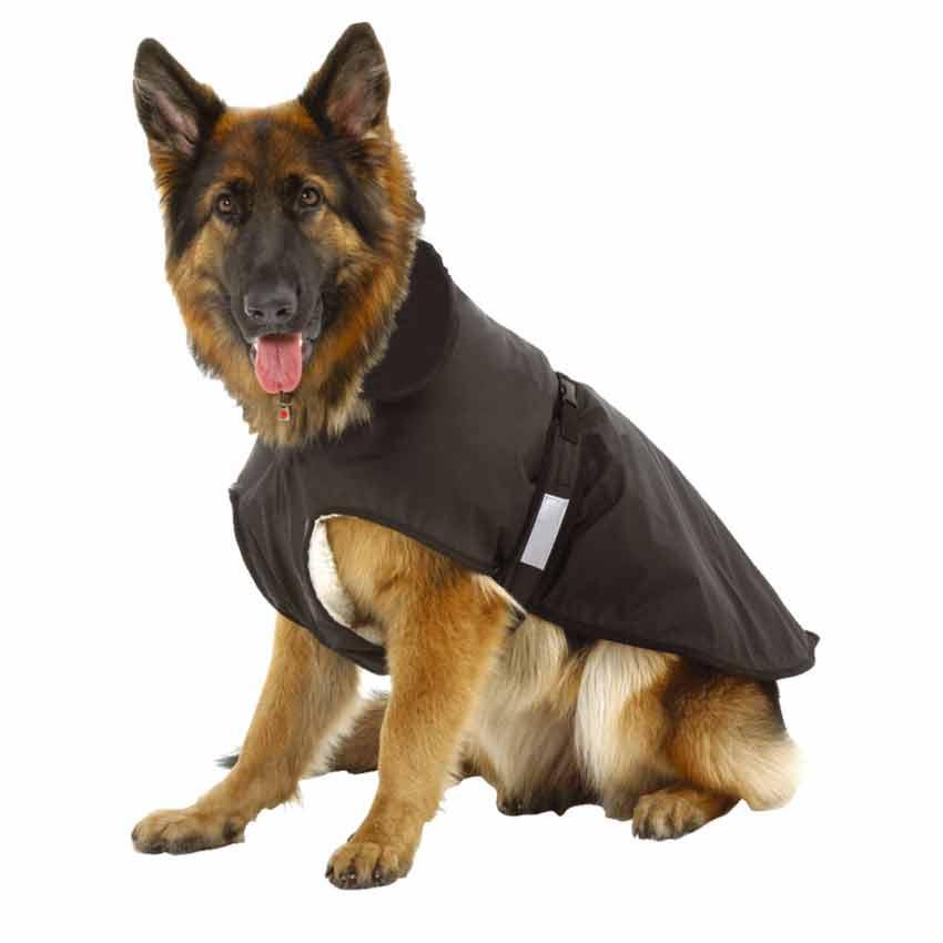 Wie ermittle ich die richtige Größe für den Hundemantel? – tiierisch ...